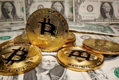 A spekuláció meghatározása és magyarázata - Bitcoin -